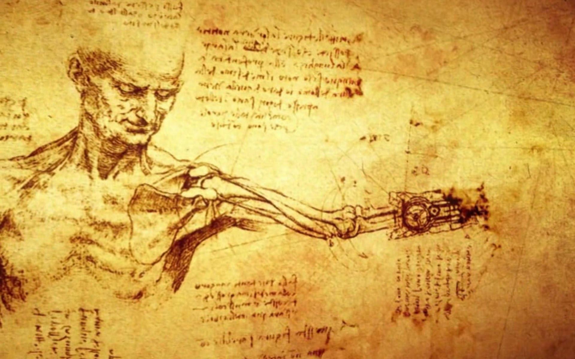 Leonardo anatomía